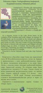 buklet gangrapetur_page_2