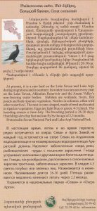 buklet mec dzknkul_page_2