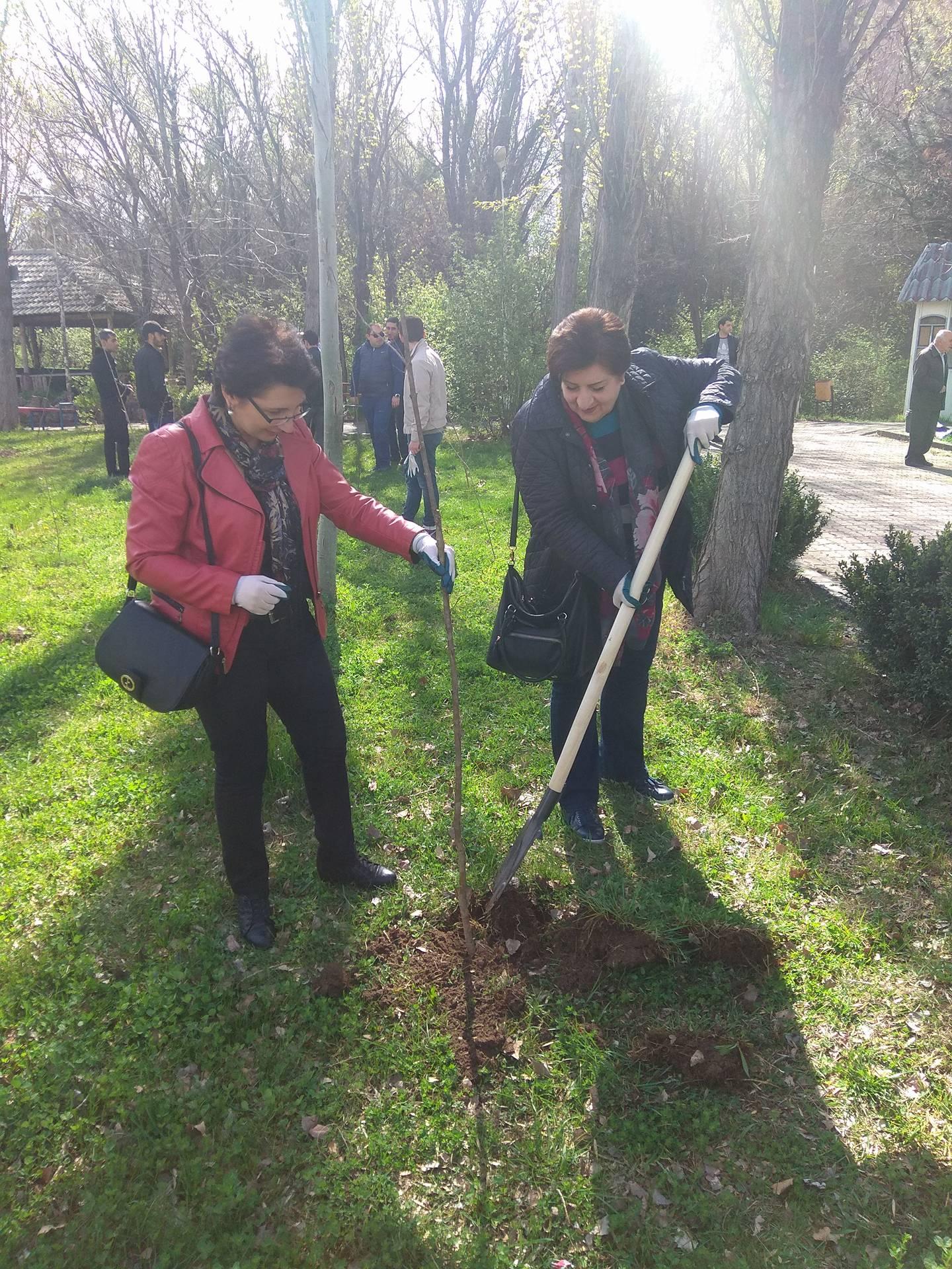 Հայաստանի բնության պետական թանգարանի աշխատակիցները մասնակցել են ծառատնկման աշխատանքներին: